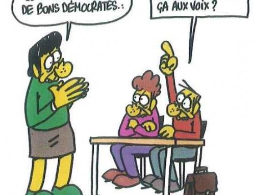 le Ceser Nouvelle-Aquitaine n'est pas convaincu par le Grand débat national