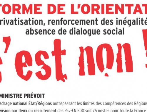 projet d'orientation scolaire de la loi Blanquer : le CESER NA méfiant et la FSU dit NON à ce projet !