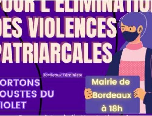 25 nov Journée internationale contre les violences faites aux femmes /patriarcales – conférence 27 et 27 nov